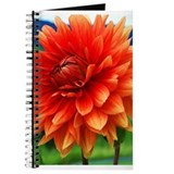 Orange Dalia Journal