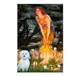 MidEve / Maltese Postcards (Package of 8)