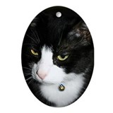 Tuxedo Cat Oval Ornament