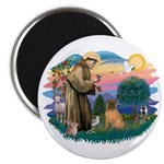 St Francis #2/ Shar Pei (#3) Magnet