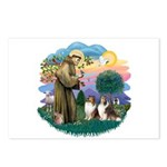 St Francis 2F - Two Shelties Postcards (Package of