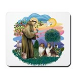 St Francis 2F - Two Shelties Mousepad