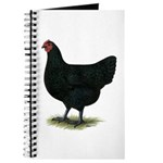 Jersey Giant: Black Hen Journal