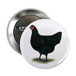 "Jersey Giant: Black Hen 2.25"" Button"