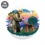 St Francis #2/ Airedale 3.5