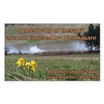 Boomershoot 2010 Sticker (Rectangle 50 pk)