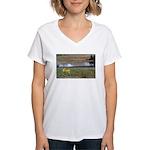 Boomershoot 2010 Women's V-Neck T-Shirt