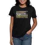 Boomershoot 2010 Women's Dark T-Shirt