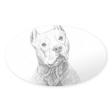 Cute Pet doc Decal