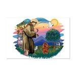 St Francis #2/ Cavalier (r) Mini Poster Print