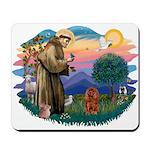 St Francis #2/ Cavalier (r) Mousepad
