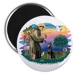 St Francis #2/ Dobie (cropped) Magnet
