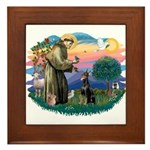 St Francis #2/ Dobie (cropped) Framed Tile
