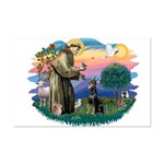 St Francis #2/ Dobie (cropped) Mini Poster Print