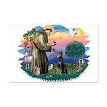St Francis #2/ Dobie (cropped) Mini Poster Print