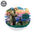 St Francis #2/ Dobie (cropped) 3.5