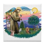 St Francis #2/ Yorkie #7 Tile Coaster