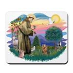 St Francis #2/ Yorkie #7 Mousepad