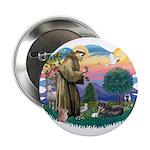 St Francis #2/ Tibetan Span 2.25
