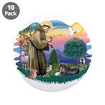 St Francis #2/ Tibetan Span 3.5