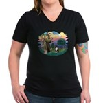 St Francis #2/ Sheltie (tri) Women's V-Neck Dark T