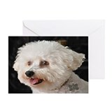 MARCO BICHON ART GREETING CARD
