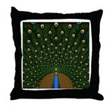 Peacock Pretty Pillows Throw Pillow