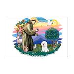 St Francis #2/ Bichon #1 Mini Poster Print