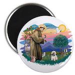 St Francis #2/ Cairn T (#14) Magnet