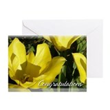 Yellow Tulip Congratulations Cards 5x7 (Pk of 10)