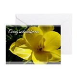 Yellow Tulip Congratulations Cards 5x7 (Pk of 20)