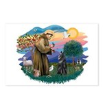 St Francis #2/ B Shepherd Postcards (Package of 8)