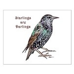 Starlings Are Darlings Small Poster