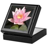 Pink Lotusflower Keepsake Box