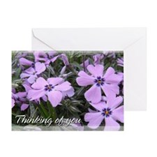 Purple Phlox Thinking of You Card 5x7