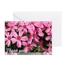 Pink Phlox Thank You Card 5x7