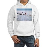 B-17 Formation Jumper Hoody