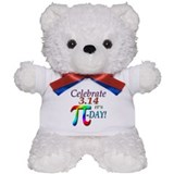 Pi Day Teddy Bear