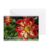 Dahlia Congratulations Cards 5x7 (Pk of 10)