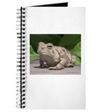 Fowler's Toad Journal