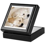 GOLDEN RETRIEVER SLEEPING PUPPIES Keepsake Box