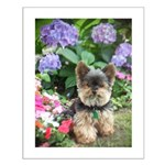 The New Yorkie Attitude Small Poster
