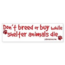 Funny Save a dog Bumper Sticker