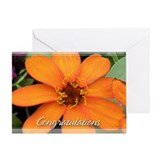 Orange Zinnia Congratulations Card 5x7