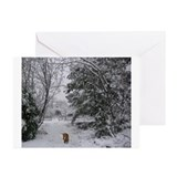JUBA LEE RR SNOW BOUND Greeting Cards (Pk of 20)