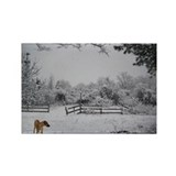 JUBA LEE RR SNOWED IN Rectangle Magnet