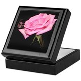 Keepsake Box, Pink Rose with Butterfly