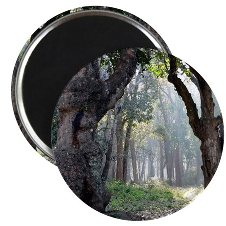 Trees of the Forest Magnet