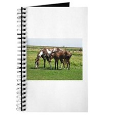 Cute Halter Journal