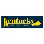 Kentucky Gold Sticker (Bumper)